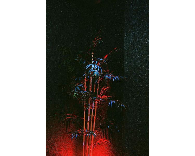 aleksandra-kubos-meska-rzecz-010