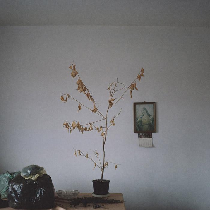 marlena-lablonska-09