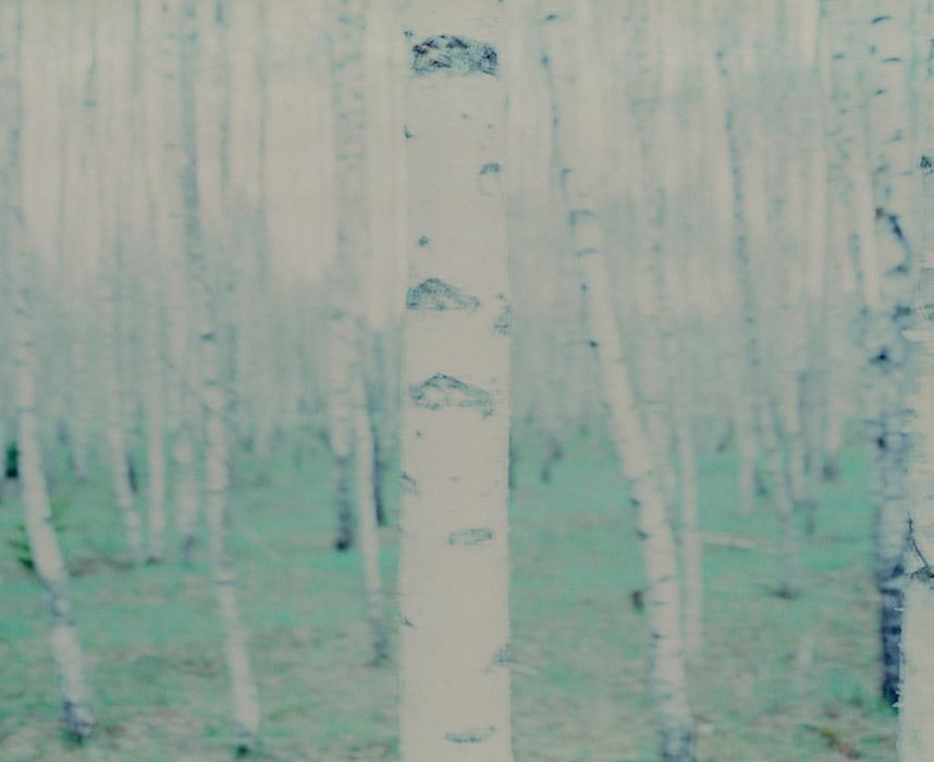 marta-berens-bajka-08