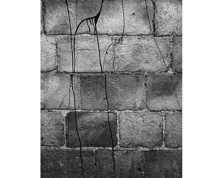 wiktor-dabkowski-1200-pogzebanych-zywcem-005